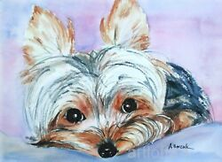 YORKSHIRE TERRIER PUPPY DOG Art Print SIGNED A Borcuk PAINTING 8x10