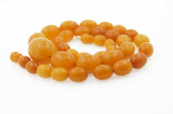 Amber Butterscotch Amber Ladies Necklace