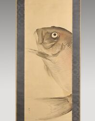 Japanese Painting Hanging Scroll Japan Fish Red Snapper Original Picture 542h