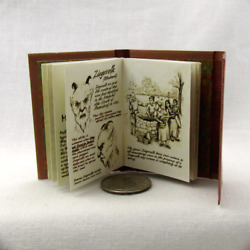 16 Scale Wesen Book Of Lore Readable Book Grimm Blythe Barbie Play Scale Phicen