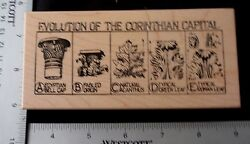 Evolution Of Corinthian Capital Columns By Stampa Rosa Tin Can Mail J59-429