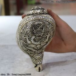 Tibet Buddhism Old Conch Shell Hand Carved Fly Dragon Long Trumpet Conch