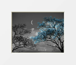 Blue Black White Tree Moon Bedroom Living Room Photo Artwork Matted Picture