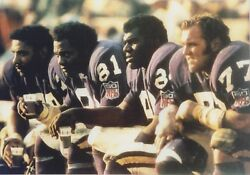 Purple People Eaters 8x10 Photo Minnesota Vikings Picture On Bench