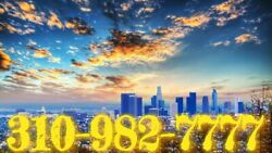 310 Easy Phone Number 310xyz-7777 Gold Plated California Most Wanted Lucky No.
