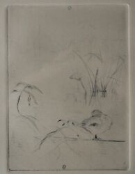 Berthe Morisot Impressionist Drypoint Etching,le Lac Or Le Canard, C1888