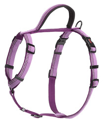 The Company of Animals - Halti Walking Harness chest 22