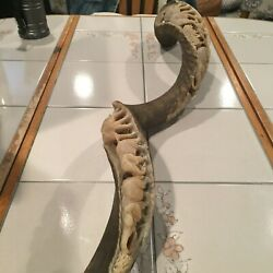 Vintage African Kudu Horn With Carved Elephants And Trees ...signed Please Look