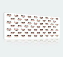 15and039 X 10and039 Step And Repeat Fabric Wall Box Display Tradeshow Advertising Display