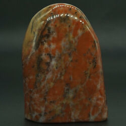 251g Natural Gems Bamboo Agate Palm Stone Raw Materials Specimen Crystal Rock