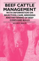 Beef Cattle Management With Information On Selection Care Breeding And ...