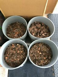 491.5 Pounds 95 Copper Pennies Pre 1982 Wheat Lincoln Coins Local Pickup Only