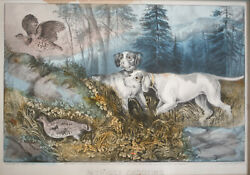 Currier And Ives Hand Colored Lithograph Captioned, Patridge Shooting, C1870