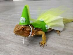 Super Cute Bearded Dragon Lime Princess Dress Costume and hat
