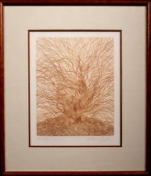 Guillaume Azoulay, Caprea, Etching, Signed And Numbered In Pencil
