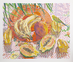 Janet Fish Still Life With Tropical Fruits Screenprint Signed Numbered And