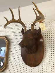 Rare Life Size Handcarved Deer Head Mount W/ Antlers Wall Hanginggermany -wn54