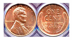 1919-d 1c -pure Mint Red Color-lincoln Wheat Cent++