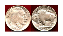 1913 Ty2-5c-attractive Toning Of Gold, Lavender And Gray Tones-buffalo Nickel++