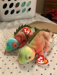 2 Beanie Babys rainbow With Iggy Tag Lots Of Errors Tag, Spaces One With Tongue