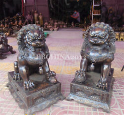 23.2 Collect China Fengshui Art Bronze Copper Carved Lion Sculpture Statue Pair