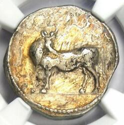 Greek Lucania Laus Ar Stater Man-headed Bull Coin 480-460 Bc - Certified Ngc Vf