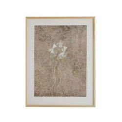 Muji Lithograph Vayedabrothers Seeds Limited Edition With Flame Japan 99900088
