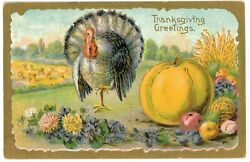 Illustration Of Turkey With Pumpkin And Fruits Thanksgiving Greetings Postcard