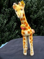 Vintage Steiff 1960s Mohair Giraffe With Ear Button And Chest Tag - 13 Inches Tall