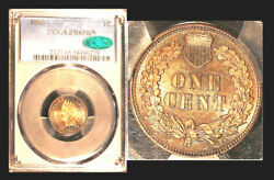 1880 1c Pr65bn Pcgs/cac-rare Pop 31-only 22 Finer- Indian Head Cent