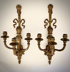 Stunning Pair Of Extremely Rare Antique French Bronze Three Arms Light Sconces