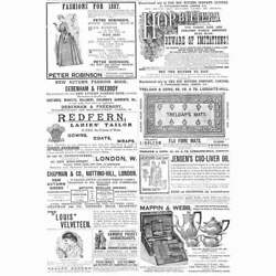 Victorian Adverts Hop Bitters, Treloar's Rugs, Mappin And Webb-antique Print 1887