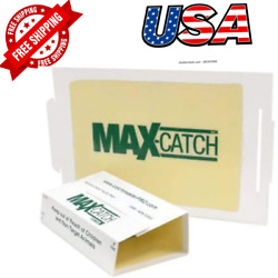 Mice Glue Traps Pest Sticky Boards 72 Max Trap Catch Spiders Insects 36 Count