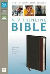 Niv, Thinline Bible, Imitation Leather, Gray/burgundy, Red Letter Edition