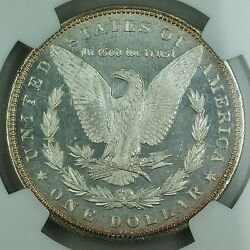 1892 Morgan Silver Dollar 1 Coin Ngc Ms-63 Proof-like Rare Date For Pl