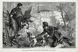 DOG Basset Hounds Hunters Hunting Pheasant 1870s Antique Engraving Print