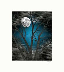 Blue Gray Tree Moon Photography Home Decor Bedroom Wall Art Matted Picture