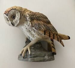 Forever Nature Owl A Limited Edition Of 5000 By Fred Aman E-3139