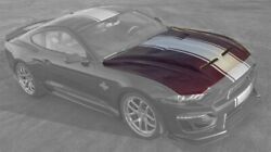 2018-2020 Ford Shelby