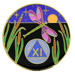 11 Year Aa Coin New Design Dragonfly Chip Alcoholics Anonymous Sober Medallion