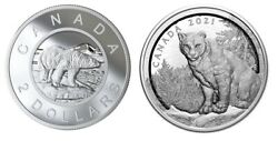 Canada 2019 Randd 2 Multilayered Polar Bear Toonie And 2021 50 3d Cougar Coins