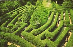 People Playing At The Governor#x27;s Palace Maze Williamsburg Virginia Postcard