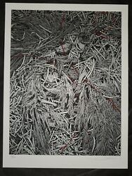 Aaron Horkey Hoarfrost Edition Of 60 Screen Print Sdcc Sold Out