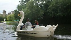 Swan Pedalo Pedal Boat For Annual Hire