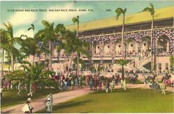 People At Club House And Race Track, Hialeah Race Track, Miami, Florida Postcard