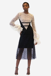 Nwt - Designer V-shaped Guipure Lace And Crepe Dress