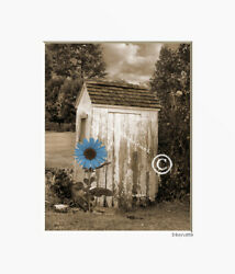 Brown Blue Sunflower Outhouse Country Farmhouse Photography Matted Artwork