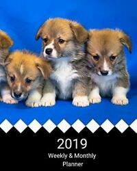 2019 Weekly And Monthly Planner Welsh Corgi Puppies Daily By A All In Day New