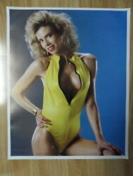 Sexy Girl Dorm Poster Big Hair Vintage #x27;80s Kimberly Layne Swimsuit