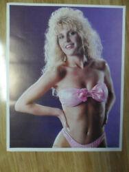 Sexy Girl Dorm Poster Big Hair Vintage #x27;80s Jennifer Zdenek Swimsuit